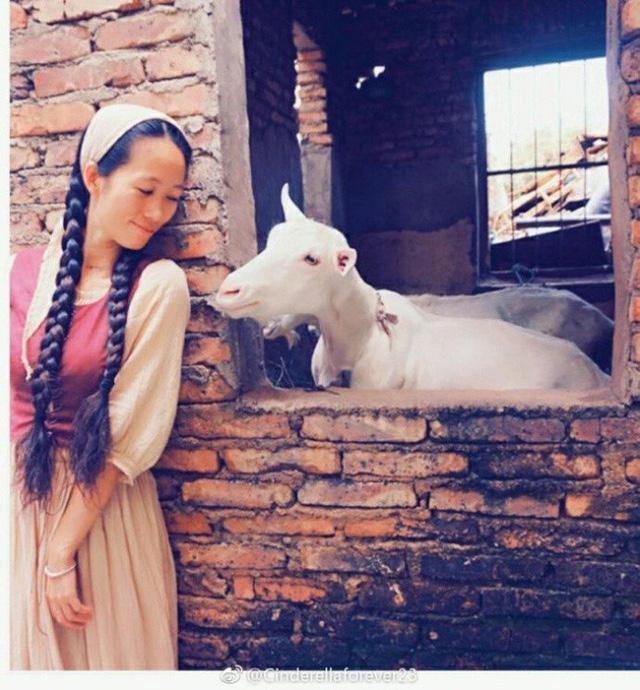 Cô nàng tự tay nuôi các loài động vật...