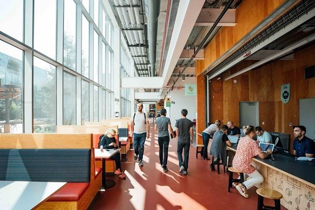 Nghiên cứu mới của Đại học Harvard chỉ ra không gian mở làm giảm hiệu quả công việc