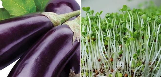 Chuyên gia dinh dưỡng khuyến cáo 5 loại thực phẩm không nên ăn sống, trong đó có rau mầm