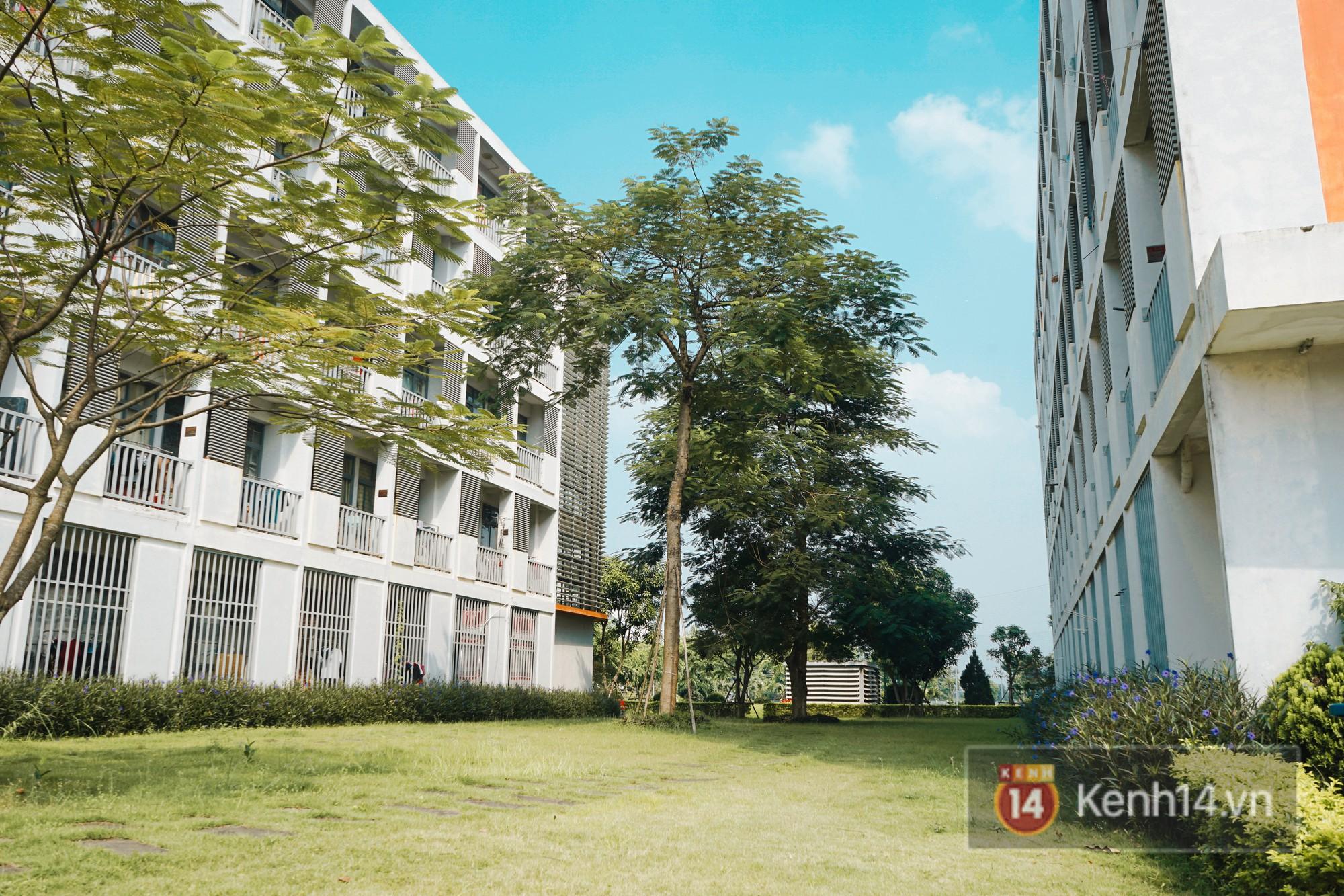 Khuôn viên xung quanh rất nhiều cây xanh và thảm cỏ.