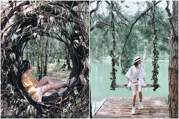 """Hóa công chúa ngủ trong rừng phiên bản """"xích đu tổ chim"""" giữa khu vườn thần tiên HOT nhất Đà Lạt"""