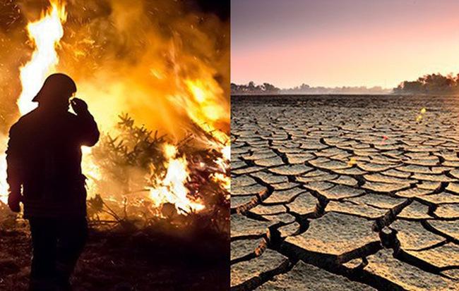 Nghiên cứu đáng báo động: Trái Đất 5 năm nữa sẽ nóng hơn bây giờ
