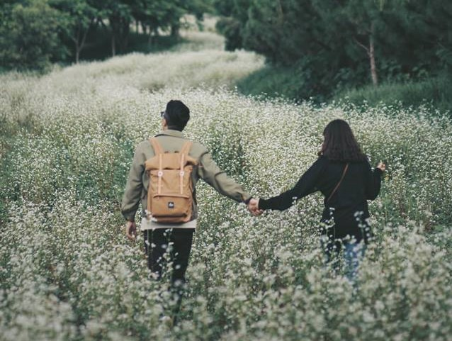 Tương truyền, nắm tay nhau đi giữa cánh đồng hoa tam giác mạch đang nở rộ ở Đà Lạt, bạn sẽ một bức hình ngàn like!