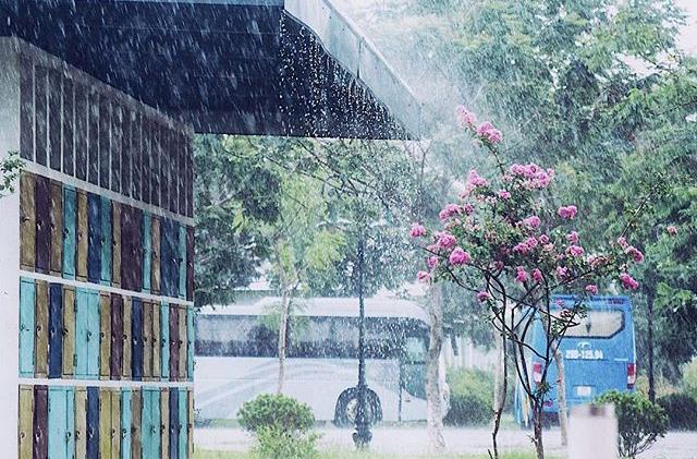 Trước khi có nhiều công trình thế kỉ ra đời, đây mới chính là ngôi trường check-in sang chảnh bậc nhất Việt Nam!