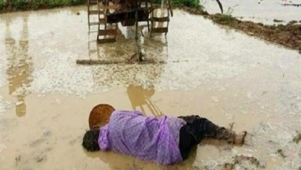 Ứa nước mắt nhìn cảnh người cha chết gục bên thửa ruộng cày dở vì kiệt sức