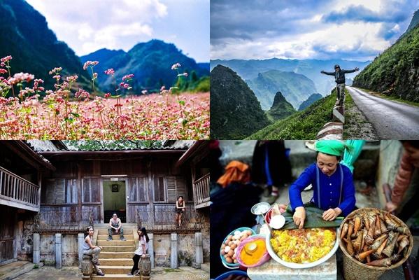 Trọn bộ bí kíp chinh phục cánh đồng hoa Tam Giác Mạch - Hà Giang, thiên đường là đây chứ đâu!