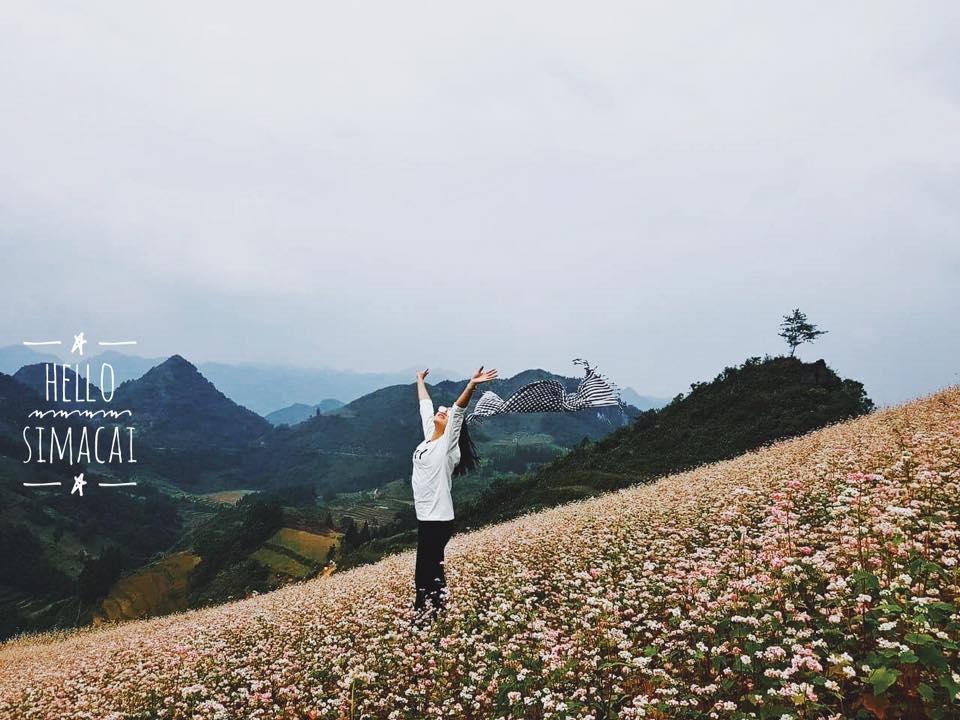 """Đã đời """"nghía"""" cả sắc trời hồng trên đỉnh trời Si Ma Cai - Lào Cai, bạn đã thử một lần chưa?"""