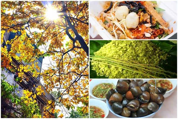 """Rủ ngay """"cạ cứng"""" đi la cà với 10 món ăn vặt ngon, bổ, rẻ để thêm nhớ mùa thu Hà Nội"""