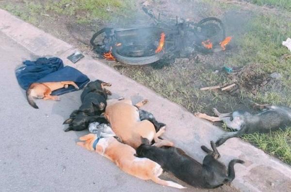 2 thanh niên đi Exciter trộm chó bị đánh nhừ tử, đốt xe