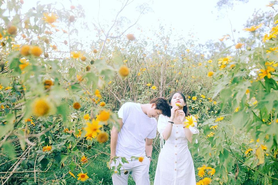 """Xem xong bộ ảnh """"tình bể bình"""" này, bạn sẽ thấy mùa hoa dã quỳ xứng đáng để gửi gắm cả thanh xuân như thế nào"""