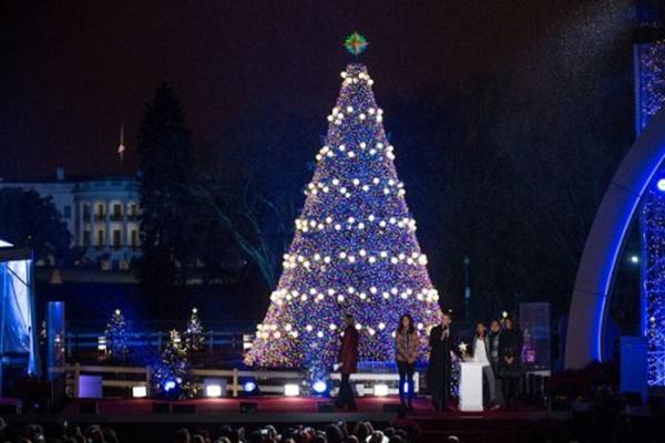 Xuất hiện cây thông Noel khổng lồ cao tận 12m giữa lòng Hà Nội