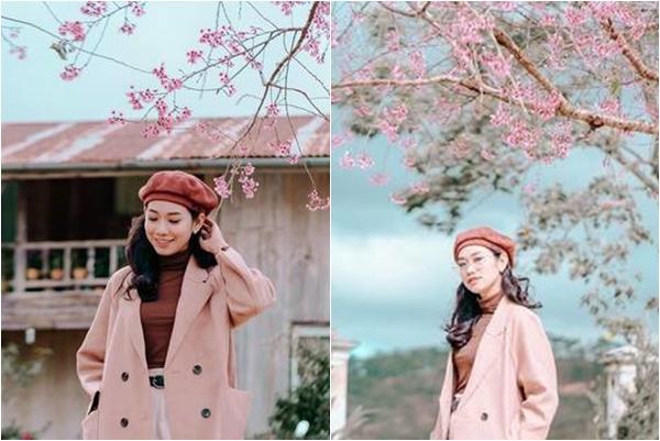 """Đà Lạt đã vào mùa mai anh đào nở hồng rực đẹp tựa Nhật Bản, chỉ nhìn thôi chả """"cần cưa cũng đổ"""""""
