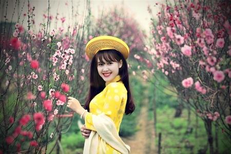 """Chiếm sóng trái tim những ngày cận Tết chính là vườn đào Nhật Tân lên hình đẹp """"thần sầu"""" này"""