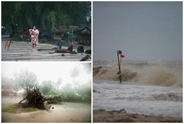 Khung cảnh ngổn ngang với hàng ngàn cây cối gãy đổ khi bão Pabuk đổ bộ vào Thái Lan