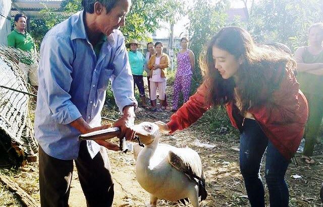 Lão nông Huế bất ngờ bắt được chú chim lạ có đeo thiết bị trên lưng, nhiều người hỏi mua chưa bán