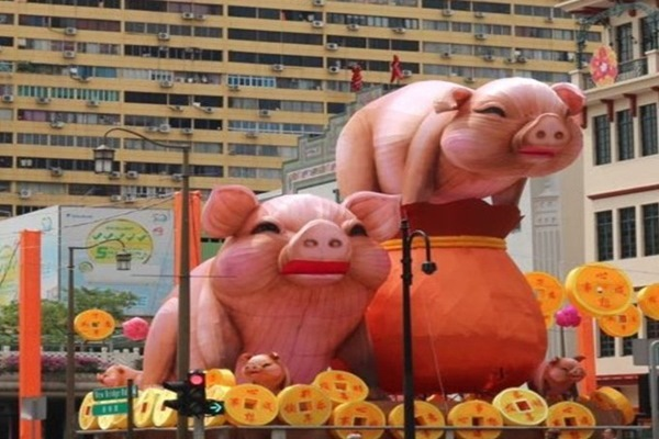"""Tội nghiệp 2 chú heo khổng lồ trang trí Tết ở phố Tàu Singapore bị """"ném đá"""" chê bai thậm tệ!"""