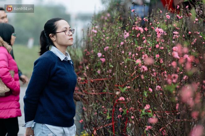 Người người xem hoa, cảm nhận không khí đậm chất xuân của tháng cuối cùng trong năm âm lịch.