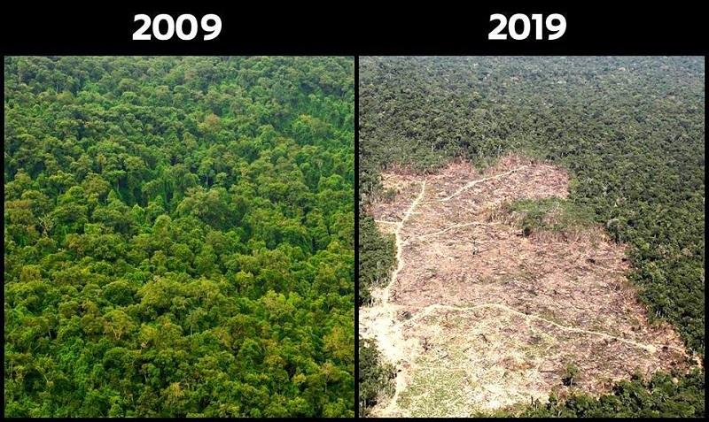 """Đưa thiên nhiên vào trào lưu """"Thử thách 10 năm"""", con người giật mình nhìn lại sự thay đổi đáng buồn"""