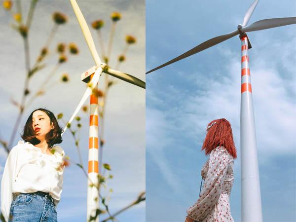"""""""Share"""" mạnh tay tọa độ: cánh đồng quạt gió đẹp ngỡ trời Tây mới xuất hiện đã gây """"chấn động"""" ở Đắk Lắk"""