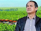 Cần mẫn trồng cây ăn trái suốt 2 năm, Bầu Đức thu về hơn 200 triệu USD nhưng HAGL chưa hết khó khăn