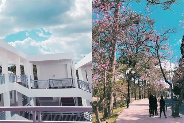 Đại học Đà Lạt khiến dân tình ngất ngây với những góc khuôn viên đẹp mê hồn