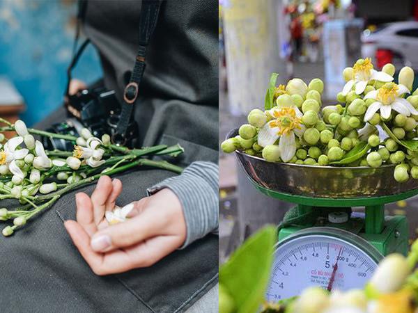 """Mùa hoa bưởi """"nồng nàn Hà Nội"""", gánh rong giá 300 nghìn đồng/kg vẫn cháy hàng"""