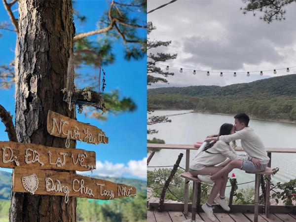 """Dắt """"gấu"""" truy lùng 3 tấm biển gỗ trên cây đáng yêu """"hết sảy"""": """"Người yêu ơi, Đi Đà Lạt về, Đừng chia tay nhé"""""""