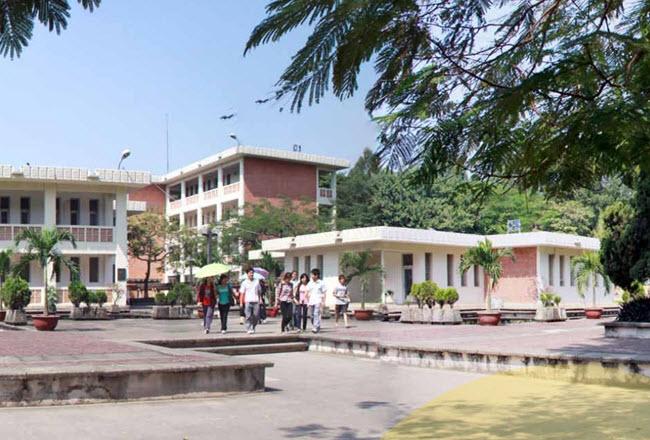 Đại học Ngoại ngữ tăng gần 100 chỉ tiêu tuyển sinh so với năm ngoái