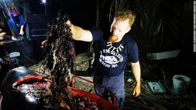 Xót xa phát hiện 40 kg rác nhựa trong bụng chú cá voi con xấu số dạt vào bờ biển Philippines