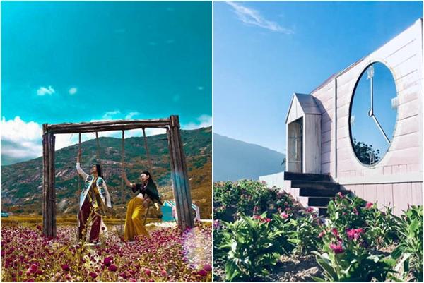 """Truy lùng tọa độ xích đu gỗ giữa thảm hoa tím ở Ninh Thuận """"lên hình"""" đẹp như tạp chí nước ngoài"""