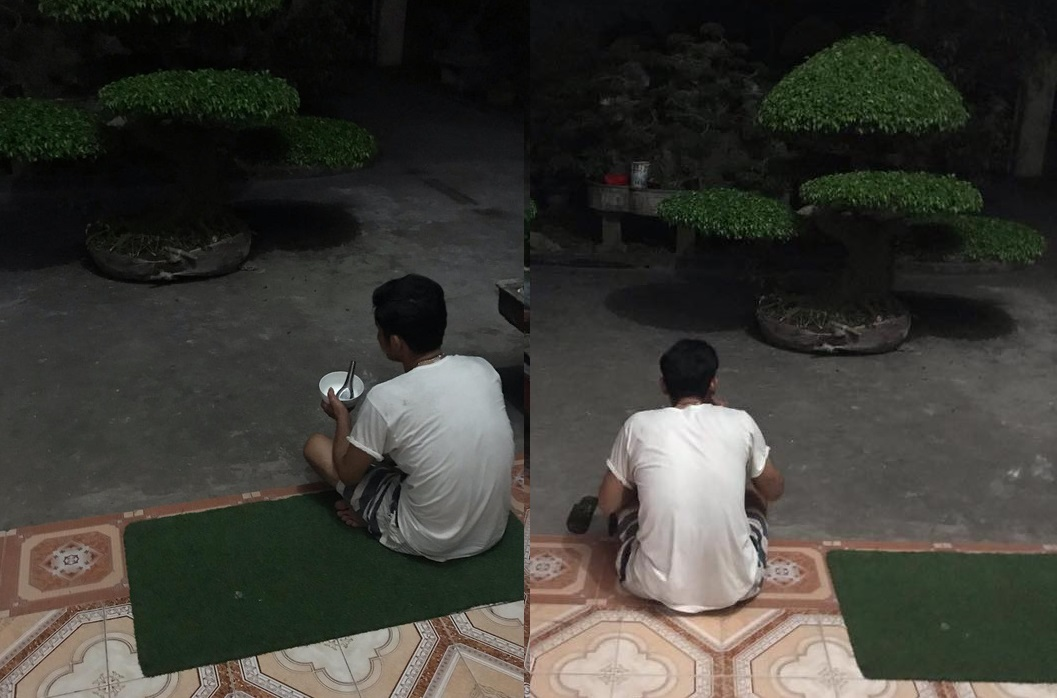 Người đàn ông cầm bát cơm, ngồi suốt 3 tiếng ngắm 2 chậu cây và giao kèo thú vị với vợ