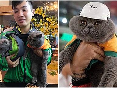 """Yêu mèo hơn yêu tiền: Chàng xe ôm mang boss đi làm cùng, bị phát hiện ăn ngay """"cú phạt"""" nhớ đời!"""