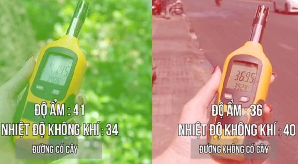 Sài Gòn nắng nóng bất thường: Chênh lệch nhiệt độ rõ rệt giữa đường nhiều cây và đường không có cây