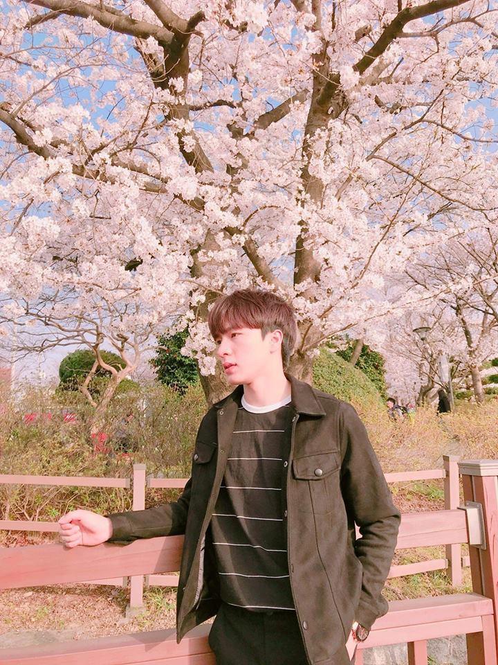 Ảnh 6: Du học sinh Việt Nam tại Hàn Quốc