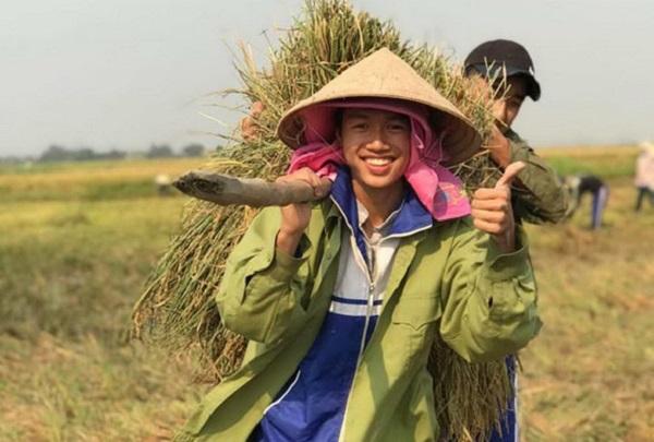 """Học sinh """"kể khổ"""" nhà không có người gặt, thầy giáo huy động cả lớp đi gặt lúa giúp bạn và cái kết không tưởng"""