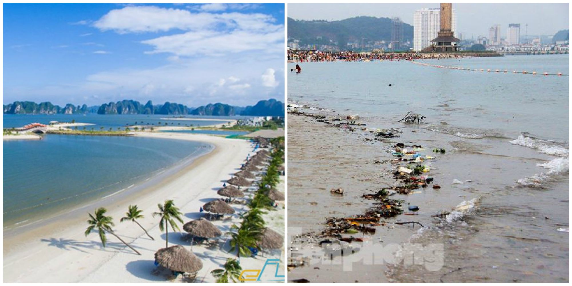 Hàng nghìn du khách vẫn ngụp lặn, bơi trong rác nổi lềnh phềnh ở bãi tắm Hạ Long