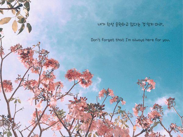Ảnh 6: Đại học Cần Thơ đẹp ngang ngửa Hàn Quốc - We25.vn