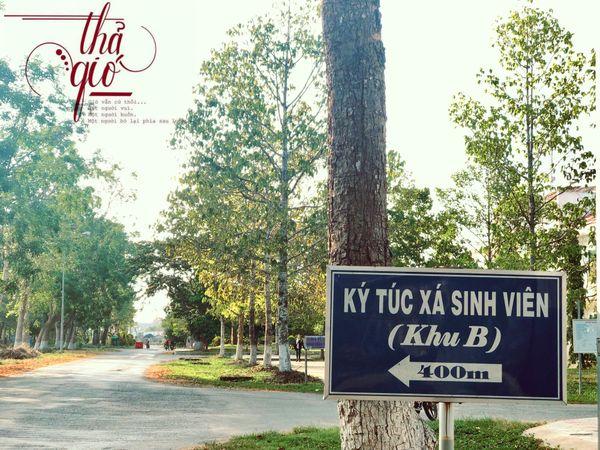 Ảnh 8: Đại học Cần Thơ đẹp ngang ngửa Hàn Quốc - We25.vn