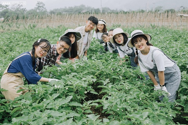 Ảnh 9: Kỷ yếu concept nông trại - We25.vn