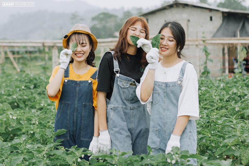 Ảnh 8: Kỷ yếu concept nông trại - We25.vn