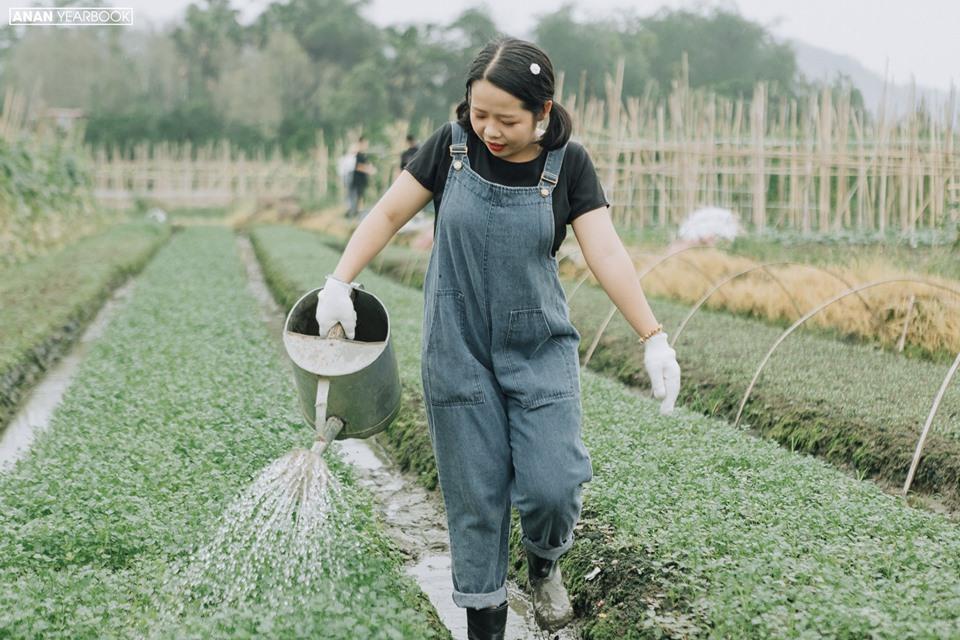 Ảnh 5: Kỷ yếu concept nông trại - We25.vn
