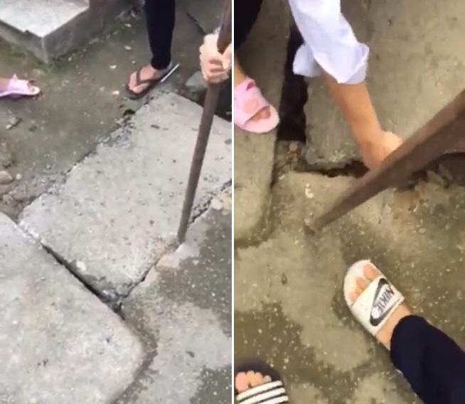 Ảnh 1: Cứu cún con dưới cống trường học - We25.vn
