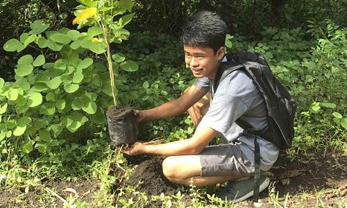 Mỗi học sinh, sinh viên phải trồng 10 cây xanh mới được tốt nghiệp