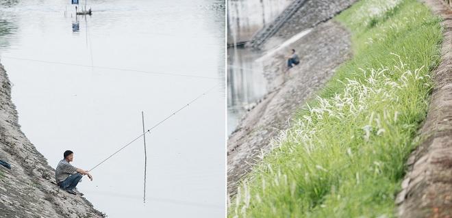 Đoạn sông Tô Lịch làm sạch bằng công nghệ Nhật Bản nước chuyển màu, cây xanh mướt, người dân câu cá