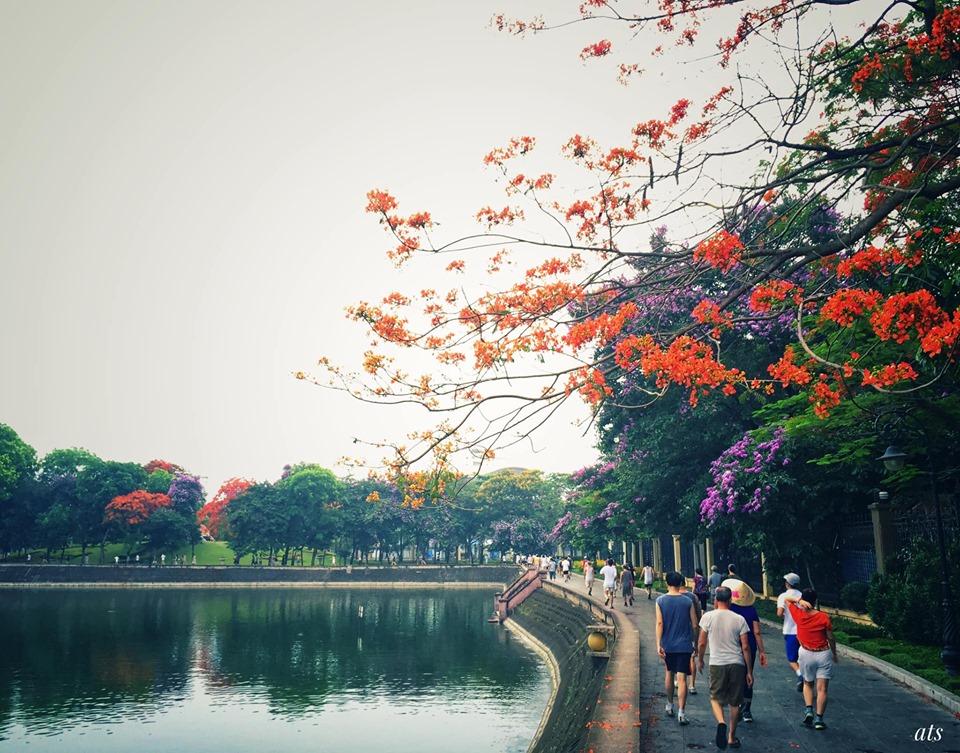 """Những góc công viên Hà Nội """"bình dị"""" đi cùng năm năm tháng tháng!"""