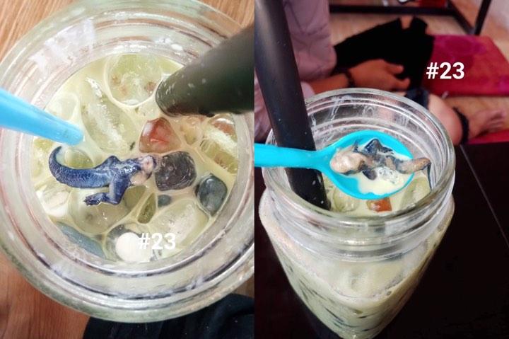 Mưa bão lặn lội đi uống cốc trà sữa, uống hết 1 nửa phát hiện nguyên con thạch sùng không đầu trong ly