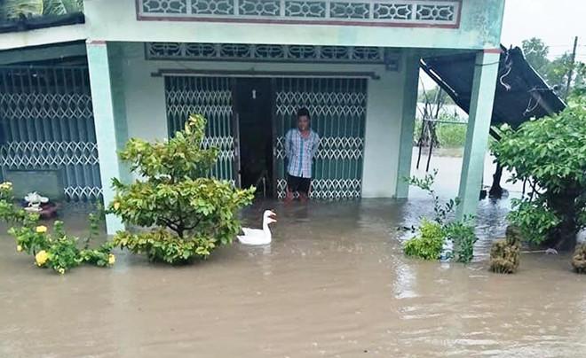 Mưa lớn kèm giông lốc, gần 800 căn nhà ở Cà Mau bị thiệt hại