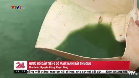 Nước hồ Dầu Tiếng xanh bất thường, nguyên nhân là vì đâu?