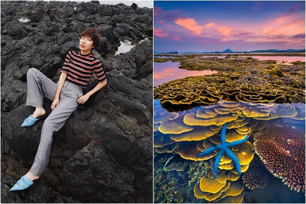 """Hóa ra Phú Yên còn có một """"thiên đường san hô trên cạn"""" mà không phải ai cũng biết này!"""