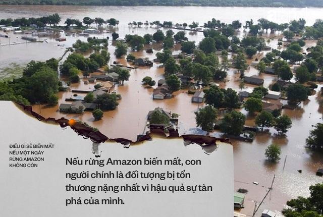 Ảnh 6: Nếu rừng Amazon biến mất - We25.vn